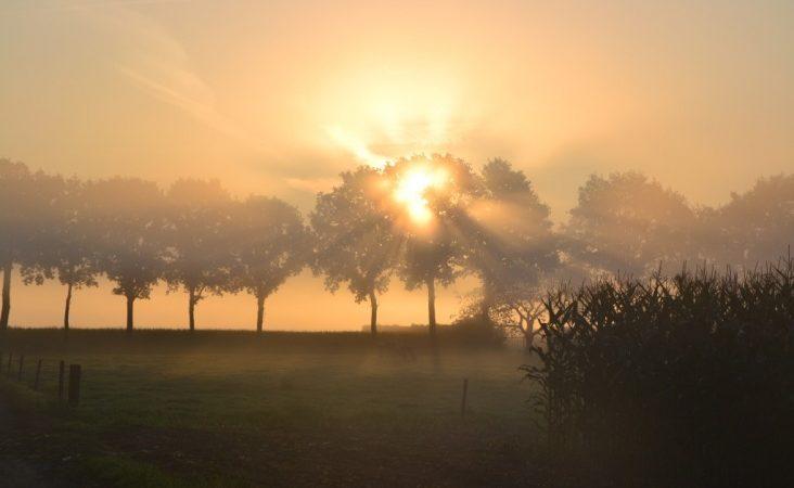 Πρόγνωση Θεσσαλίας και Σποράδων 16-18/12/19 Ανοιξιάτικος καιρός με τοπικές ομίχλες (+χάρτες ομίχλης)