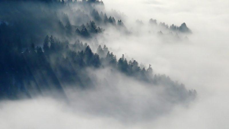 Πρόγνωση Θεσσαλίας και Σποράδων 19-20/12/19 Πυκνές ομίχλες και λίγες βροχές στα δυτικά την Παρασκευή (+χάρτες ομίχλης)