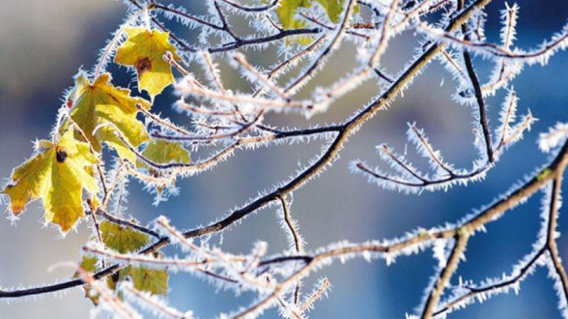 Πρόγνωση Θεσσαλίας και Σποράδων 23-24/01/20 Ηλιοφάνεια με παγετό