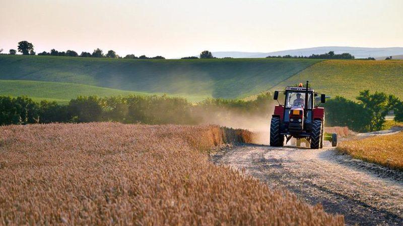Γεωργικές προειδοποιήσεις για αμπέλι,ελιά και αμυγδαλιά