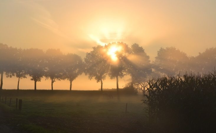 Πρόγνωση Θεσσαλίας και Σποράδων 17-19/2/20 Βελτιωμένος καιρός με τοπικές ομίχλες (+χάρτες βροχής-ομίχλης)