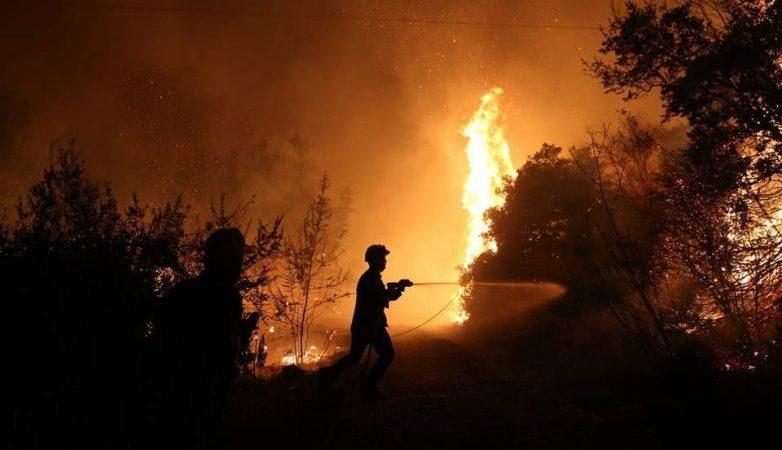 Πυρκαγιά σε καστανιές στην Μελιβοία (ΤΩΡΑ)