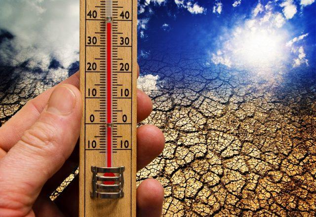 Ο πιο θερμός χειμώνας από το 1885 ήταν ο φετινός στην Ευρώπη