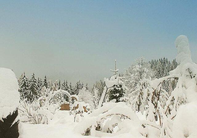 Τσουχτερό κρύο και ασθενείς χιονοπτώσεις στα ορεινά το ερχόμενο Σαββατοκύριακο 21 έως 22 -11-2020. (+ Χάρτες επιφανείας και ανώτερης ατμόσφαιρας)