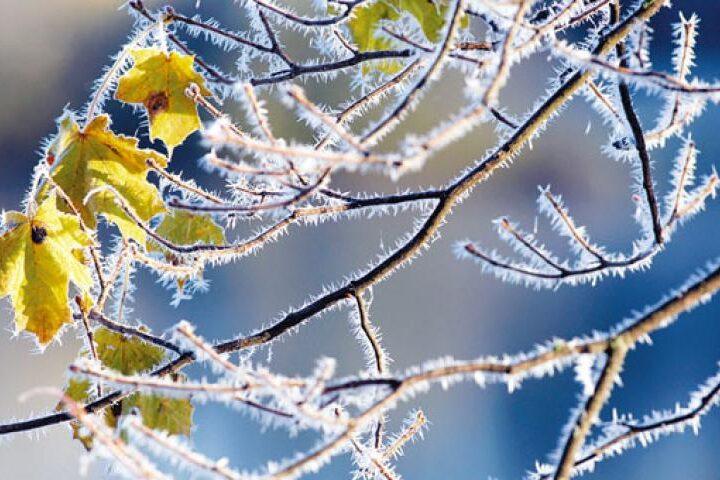 Πρόγνωση Θεσσαλίας και Σποράδων 26-29/11/20 Βελτιωμένος καιρός με ελαφρύ παγετό τις πρωινές ωρες (+χάρτης βροχής)