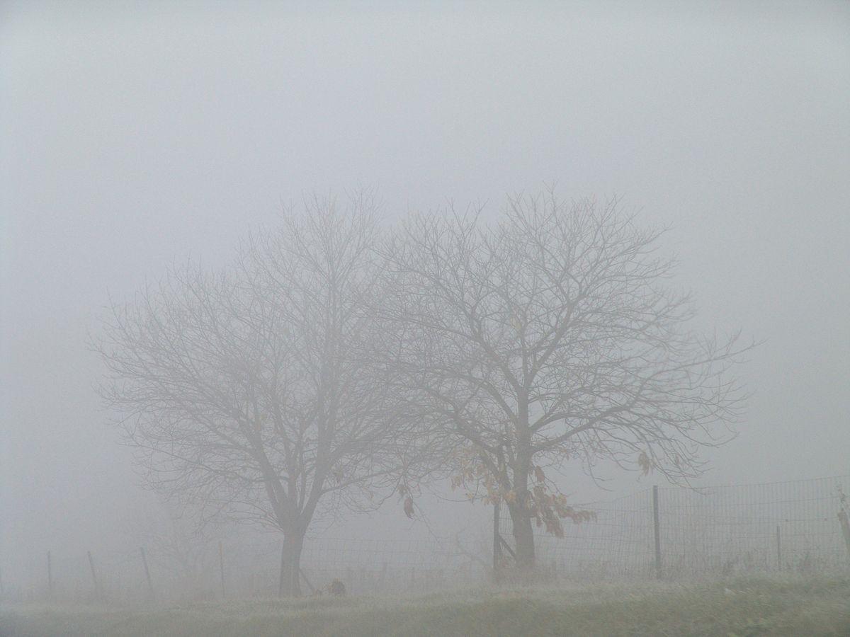 Πρόγνωση Θεσσαλίας και Σποράδων 15-17/12/20 Ομίχλες με βελτιωμένο καιρό