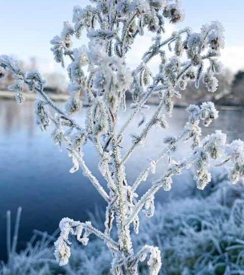 Νέα ψυχρή εισβολή από το μεσημέρι της Τρίτης 26-1-2021 στην χώρα μας(+Χάρτες επιφανείας,ανώτερης ατμόσφαιρας,υετού,ύψους χιονιού)