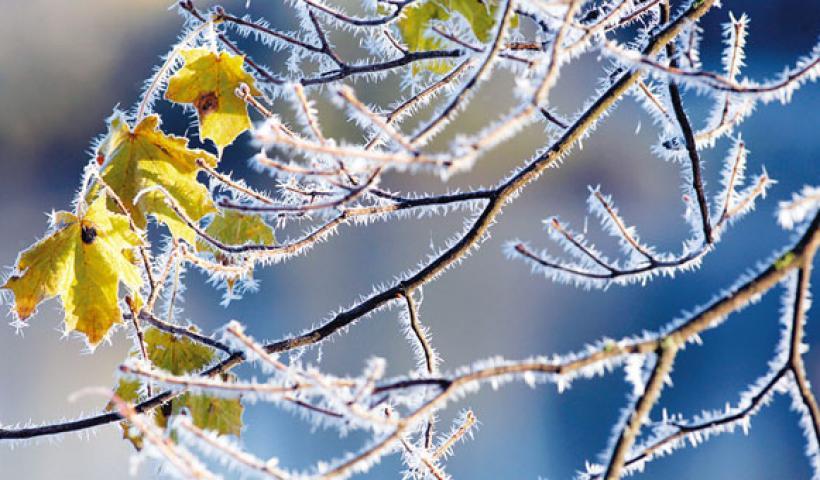 Πρόγνωση Θεσσαλίας και Σποράδων 18-20/1/21 Βελτιωμένος καιρός με παγετό (+χάρτης υετού)