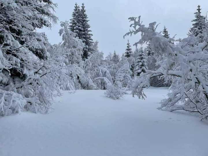 Πυκνές χιονοπτώσεις το Σάββατο 16-1-2021 στην κεντρική και νότια Ελλάδα(+Χάρτες επιφανείας,ανώτερης ατμόσφαιρας,ύψους χιονιού)
