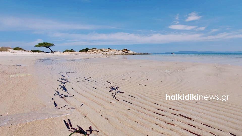 """Η άμπωτη """"εξαφάνισε"""" τη θάλασσα στο Καρύδι Χαλκιδικής! (φωτο)"""