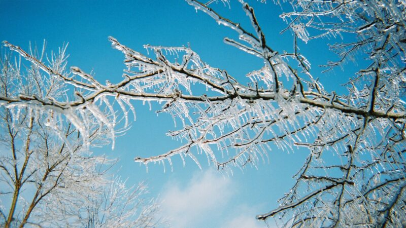 Πρόγνωση Θεσσαλίας και Σποράδων 25-28/3/21 Κρύο και παγετός έως την Παρασκευή,σταδιακή άνοδος σε ανοιξιάτικα επίπεδα το Σ/Κ (+χάρτης βροχής)