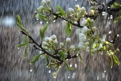 Μεταβολή του καιρού σε μεγάλο μέρος της χώρας μας το Σάββατο του Λαζάρου και σταδιακή βελτίωση από την Κυριακή των Βαΐων 2021(+Χάρτες)