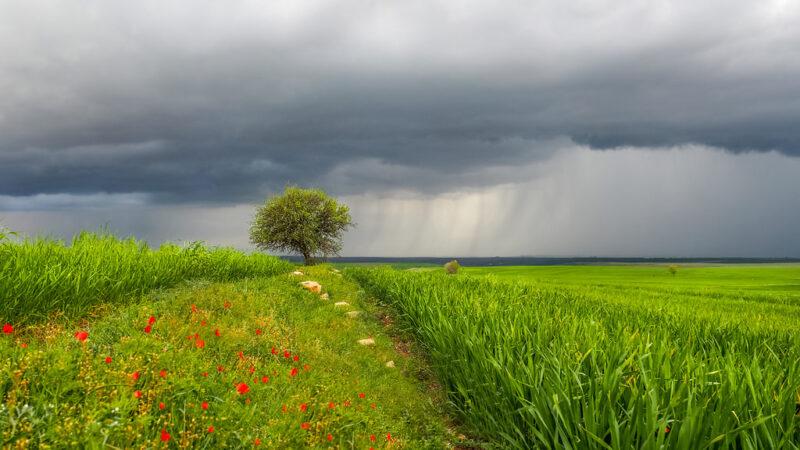 Πρόγνωση Θεσσαλίας και Σποράδων 22-23/4/21 Τοπικές βροχές απο την Παρασκευή (+χάρτης βροχής)