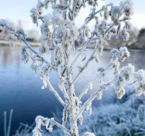 Σε ποιες περιοχές της χώρας μας θα σημειωθεί παγετός στις 9 και 10 Απριλίου 2021(+Χάρτες)