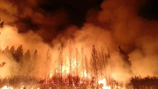 Οι επιπτώσεις από τις πυρκαγιές στην Αυστραλία στις άλλες ηπείρους
