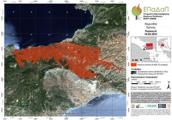 Φωτιά στον Σχίνο: Θα χρειαστούν 70 χρόνια για να επανέλθει το δάσος στα Γεράνεια Όρη