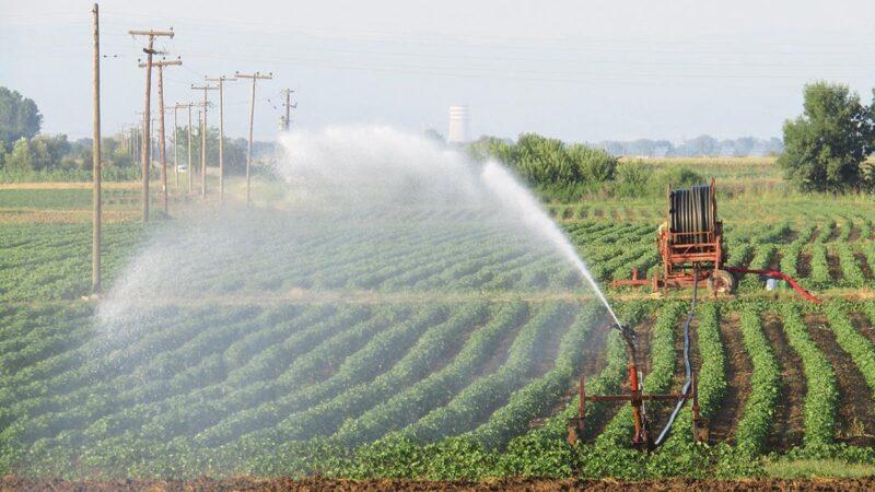 Προτεινόμενες αγροτικές εργασίες την τελευταία εβδομάδα του Ιουλίου του 2021(+Χάρτες)