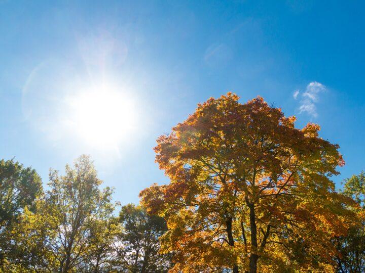 Πρόγνωση Θεσσαλίας και Σποράδων 13-15/9/21 Ηλιοφάνεια με άνοδο της θερμοκρασίας σε καλοκαιρινά επίπεδα