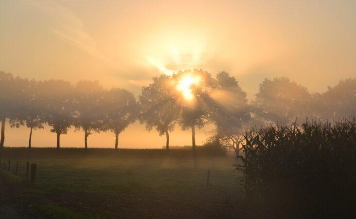 Πρόγνωση Θεσσαλίας και Σποράδων 21-23/10/21 Βελτιωμένος καιρός με τοπικές ομίχλες (+χάρτης βροχής)