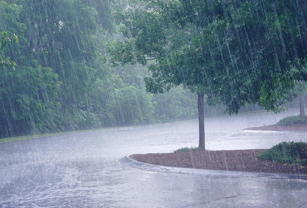 Πρόγνωση Θεσσαλίας και Σποράδων 7-8/10/21 Σημαντική κακοκαιρία με βροχές τοπικά ισχυρές (+χάρτης βροχής)